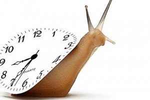 th_Snail-with-clock-on-its-back